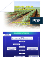 lodo_esgoto_fertilizante