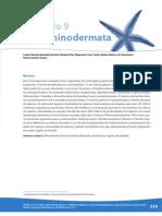 9.Echinodermata
