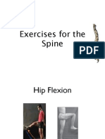 Spine Exercises