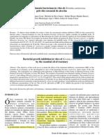 1 - COSTA et al 2008 - Inibição do crescimento in vitro de Erwinia carotovora pelo óleo essencial de alecrim OK