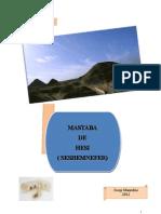 La Mastaba de Hesi