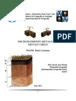 Carențe și excese de microelemente Ana_Maria_Iacob