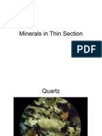 Thin Section