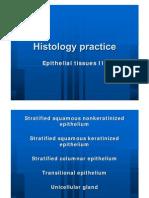Epithelial Tissue 2 histology