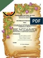 Informe Final Ilegalidad Del Transporte