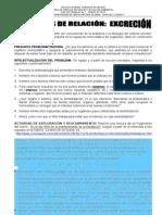 GUÍA N°1 FUNCIONES DE RELACIÓN EXCRECIÓN
