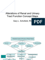 Renal+Concept+Map