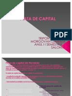 Piata de Capital-power Point 2012