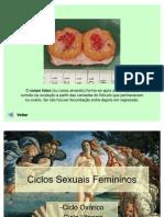 2-ciclossexuaisfemininos-110617165825-phpapp02