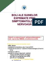 SUINE SIMP NERV