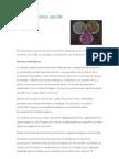 Microorganismos del EM explicación