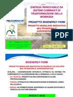 073_ARIOLI_Energia Da Biomassa Multi-impianto_Cuneo 260609