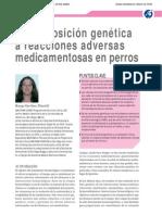 3. Predisposición genética a reacciones adversas medicamentosas en perros