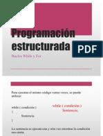 PE_Ciclos
