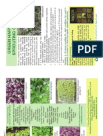 Sprouting Booklet