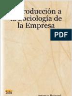 Tema 1 Introduccion a La Sociologia de La Empresa (fragmento)