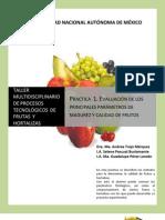 Estados de Madurez en Frutas