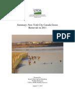 New York City Canada Goose Management Report 2011