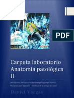 Carpeta de Lab Oratorio (Patologica II) - Copia