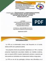 Presentación servicio comunitario 2011