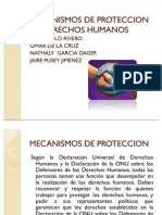 Mecanismos de Proteccion de Derechos Humanos