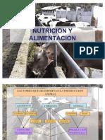 Nutricion y Alimentacion Animal