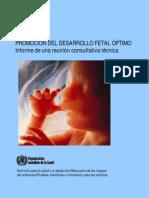 Fetal Dev Report ES