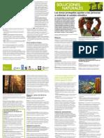 ANP-y-Cambio-Climático-1-print