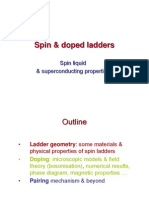 Spin & doped ladders