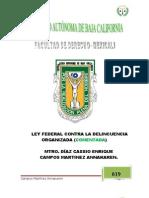 LEY FEDERALvs Delincuencia Organizada