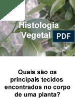 4034169 Biologia PPT Histologia Vegetal