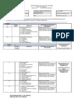 Nuevos Enfoques - Avance Programatico Flex 12-2