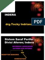 Indera-KBK-(penghidu-peraba)2009