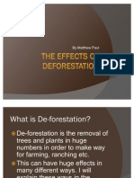 The Effects of Deforestation