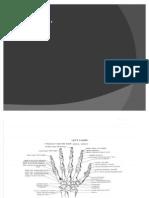 Presentation1_3