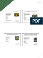 Demo Garden Guide