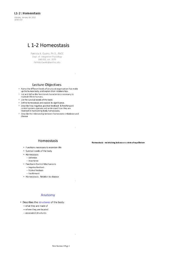 L1-2 Homeostasis   Homeostasis   Heart