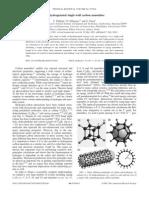 T. Yildirim, O. Gulseren and S. Ciraci- Exohydrogenated single-wall carbon nanotubes