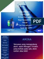 PPT amina
