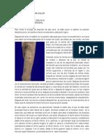 Diseccion Femoral Ante Rome Dial - Andrea Zamora Cuellar
