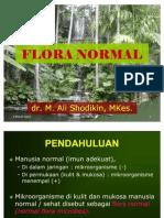 Flora Normal [Dr. Ali Shodikin]