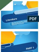 Literature Report Fin