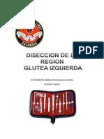 Diseccion Region Glutea Izquierda Melisa Fernanda Lara.