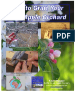 Graft Apple Orchard