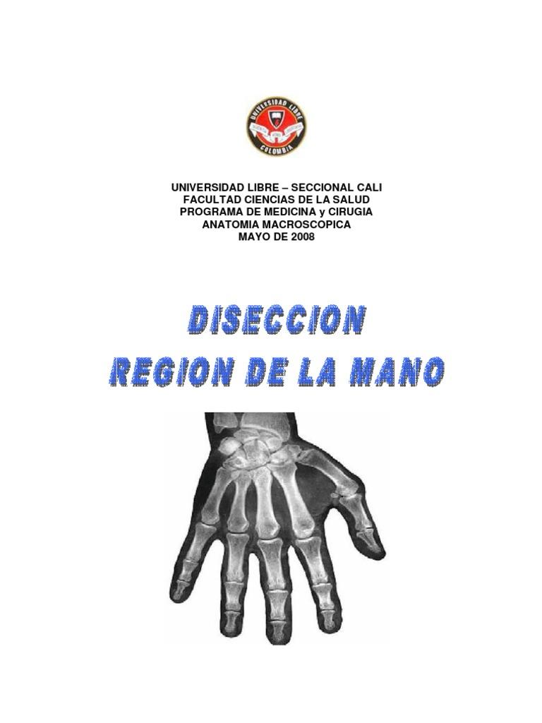 Diseccion de Mano Derecha - Carlos Mario Balcazar