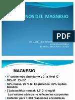 CLASE MAGNESIO 122010