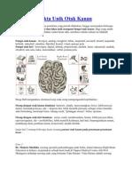 Beberapa Fakta Unik Otak Kanan