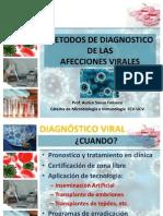 Metodos de Diagnostico Infecciones Virales 2012