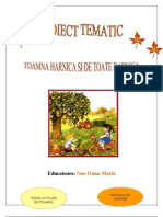 0_proiect_tematic_toamna