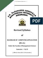 B.C.a. v & VI Semester Syllabus